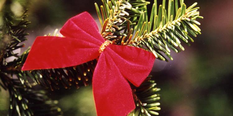 kerst 2018 arrangementen Kerstarrangementen / Nieuwjaarsarrangementen in hotels kerst 2018 arrangementen